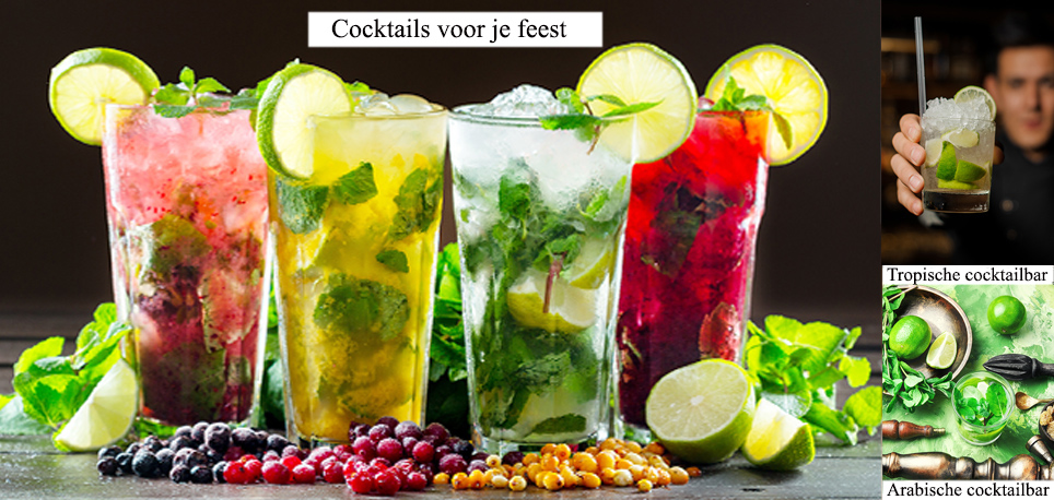 Feest Catering
